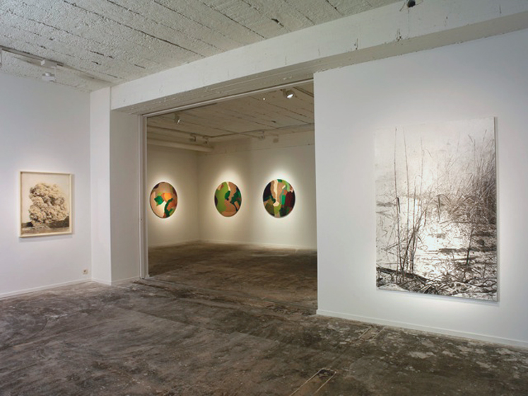 Gal Weinstein Exhibition